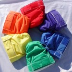 All In One Style Cloth Diaper